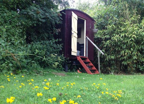 Pip & Pips Cabin